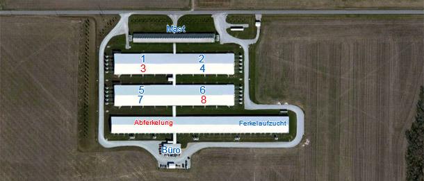6000er Sauenbetrieb mit Eigenremontierung (Teil eines 15.000 Sauensystems).