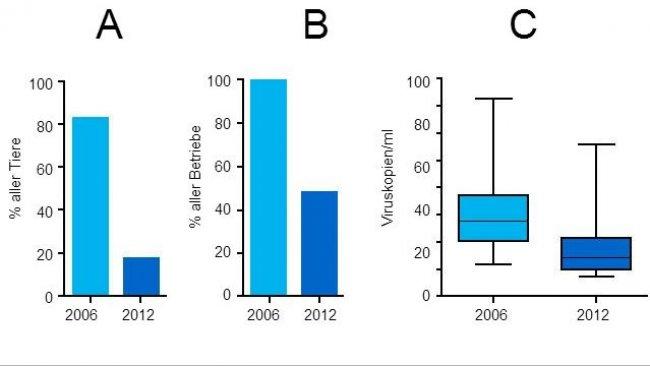 Grad der PCV2-Virämie 2006 und 2012