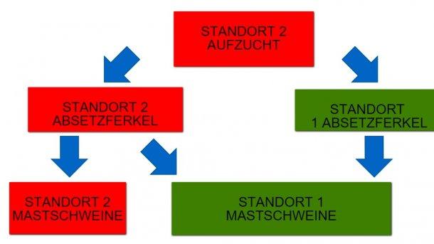 Abbildung 1: Schematische Darstellung des Durchlaufs von Schweinen in einem Produktionssystem mit zwei Standorten.
