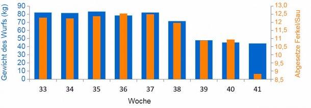 Grafik 3: Durchschnitt abgesetzte Ferkel und Kilogramm des Wurfs/ Sau vor und während des PED-Ausbruchs (ab Woche 38)
