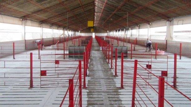 Foto 3: Reinigung und Desinfektion von Einrichtungen