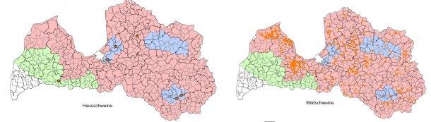 Epidemiologische Lage hinsichtlich der ASP in Lettland zwischen dem 1.Januar und dem 17.September 2017 (Quelle: Food and Veterinary Service. Republic of Latvia)