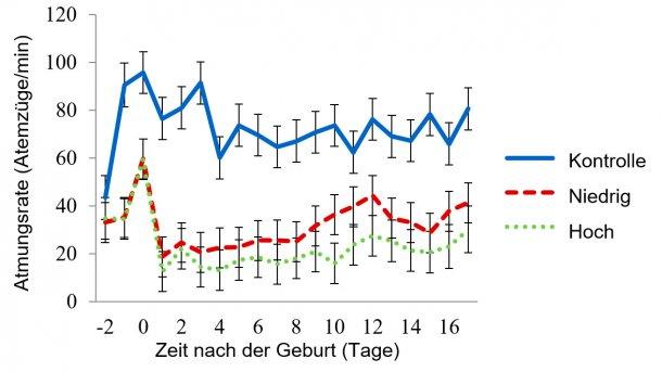 Abbildung 4: Least-Square-Mittelwerte der Atmungsraten im Raum mit moderater Hitzebelastung: Die Raumtemperaturen für die moderate Hitzebelastung wurden von 08:00-16:00 Uhr auf 32 °C und für den Rest des Tages auf 27 °C eingestellt. Die Atmungsrate wurde vom Wasserdurchfluss der Paneele (WD), der Raumtemperatur (RaumT), der Tageszeit (Zeit), dem Tag der Laktation und den Wechselwirkungen von WD x RaumT, WD x Zeit, RaumT x Zeit beeinflusst (P < 0,001).