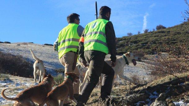 Foto 5: Die Jagd ist notwendig, aber Hunde sollten keinen Zugang zum Schweinebetrieb haben.