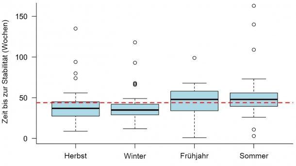 Abbildung 1: Zeit bis zur PRRS-Stabilität, die je nach Jahreszeit festgestellt wurde, in welcher der Ausbruch auftrat. Die gestrichelte Linie stellt den Gesamtmittelwert (43,9 Wochen) dar. Jede Box repräsentiert 50 % der Daten (Perzentile 25 - 75) und die schwarze Linie innerhalb der Box stellt den Median (Perzentil 50) dar, so dass die Hälfte der Ausbrüche in der jeweiligen Jahreszeit eine TTS über dieser Linie und die andere Hälfte der Ausbrüche eine TTS unterhalb dieser Linie hatte.