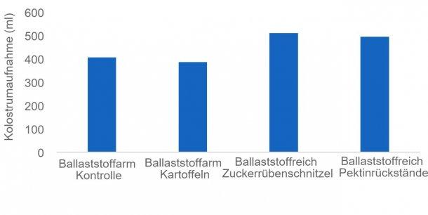 Abbildung 1: Eine ausreichende Kolostrumaufnahme ist entscheidend, damit neugeborene Ferkel am Leben bleiben, und einige Ballaststoffquellen (z. B. Zuckerrübenschnitzel und Pektinrückstände) können die Kolostrumproduktion der Sau stimulieren. In dieser Studie wurde die Kolostrumaufnahme mit Isotopen gemessen.