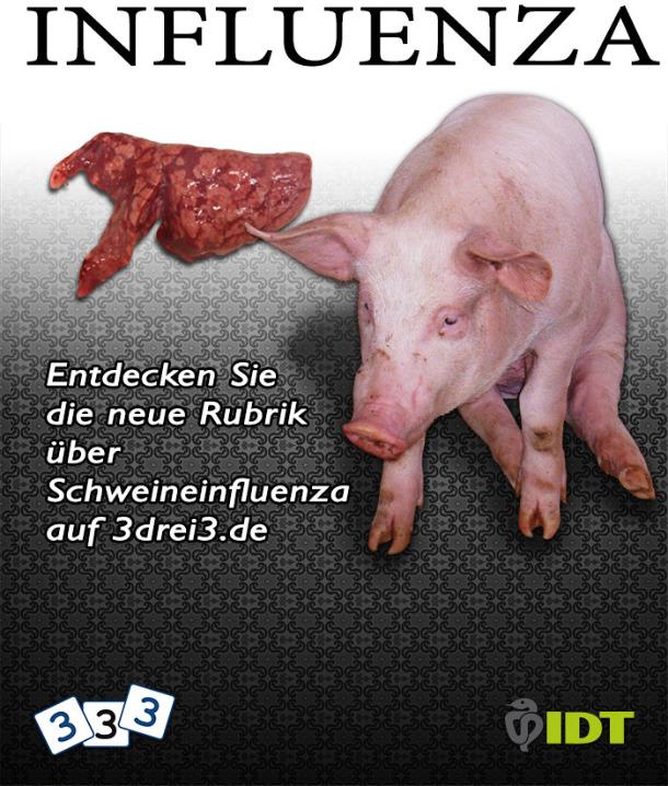 Schweine-Influenza