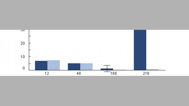 Intrazelluläre Überlebensfähigkeit von H. parasuis in porzinen Alveolarmakrophagen von Ferkeln, die zuvor mit PRRSV infiziert wurden.