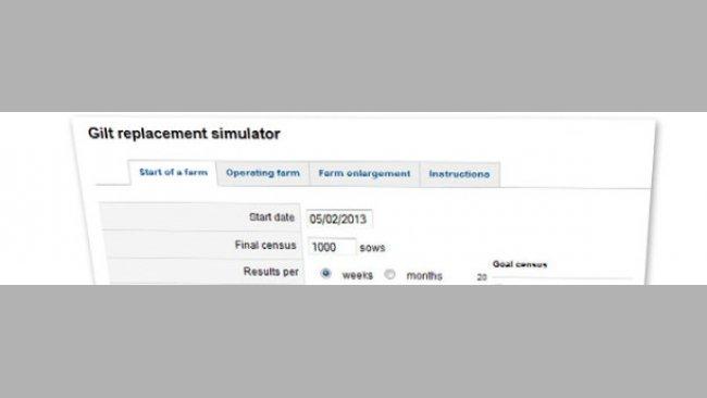 Simulator für Jungsauen-Remontierung