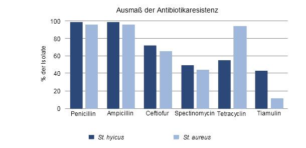 Antibiotikaresistenz von St. hyicus und St. aureus in Prozent