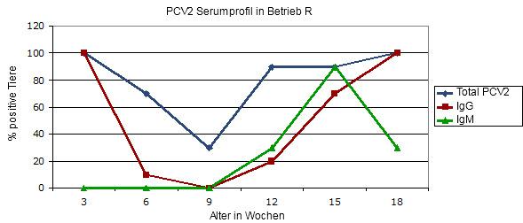 Transversales Serumprofil in einem Betrieb, welcher von einer klinischen Circovirusinfektion befallen ist, bei Ausbleiben einer Impfung.