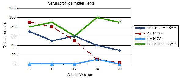 Transversales Serumprofil in gegen PCV2 geimpften Ferkeln beim Absetzen: vergleichende Antwort in zwei indirekten ELISA Tests für Gesamtantikörper.
